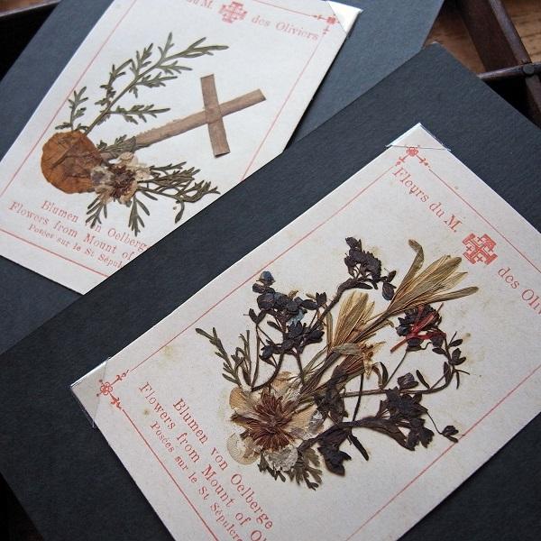 画像1: エルサレムの押し花のホーリーカード2枚セットb